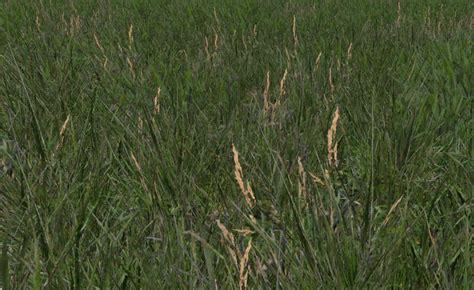 grow ls for weed grass texture v 1 0 mod farming simulator 2015 15 mod
