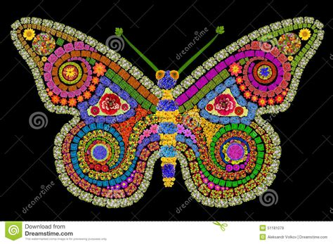 32896 Black White Yellow Collage S M L Top butterfly stock photo image 51181079