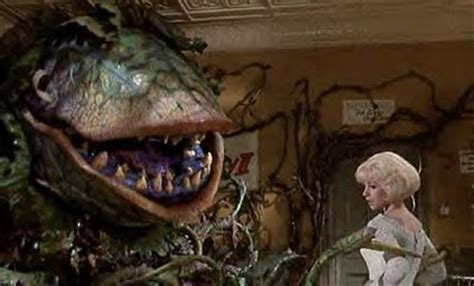 fun time movie time. little shop of horrors (1986)