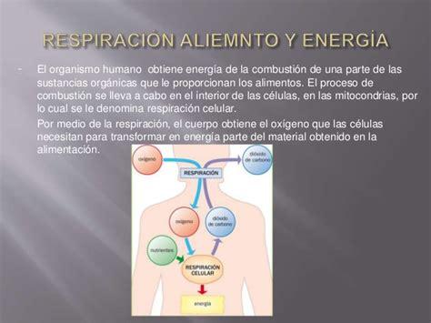 relacin de postulantes aptos para el proceso de contrato relaci 243 n entre respiraci 243 n y la nutrici 243 n