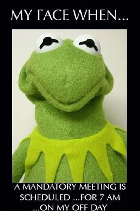 Kermit Meme My Face When - best 25 kermit face ideas on pinterest funniest gifs