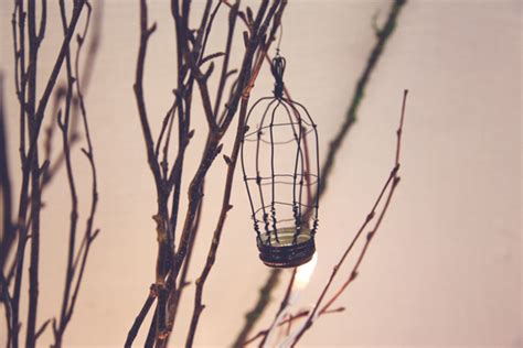 Bird On A Wire In A Cage Its All The Same by Diy D 233 Cor Bottle Cap Birdcage