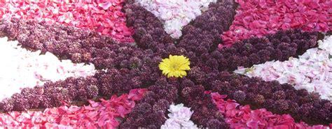 immagine dei fiori foto dei fiori stratfordseattle
