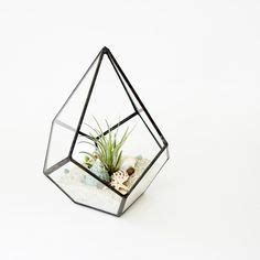 terrarium, medium hanging air plant terrarium with
