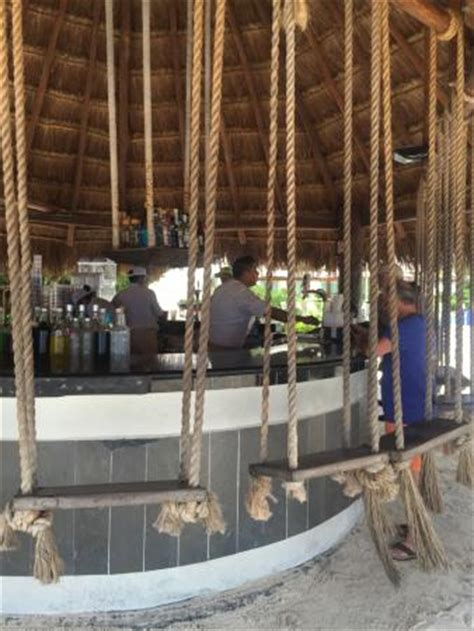 playa del carmen bar with swings swing set seating at beach bar at hotel picture of