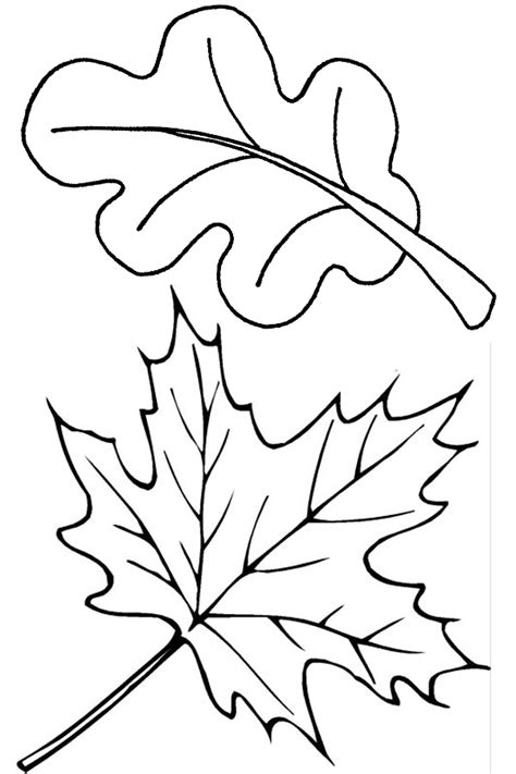 printable fall leaves autumn coloring pages to keep the kids busy on a rainy