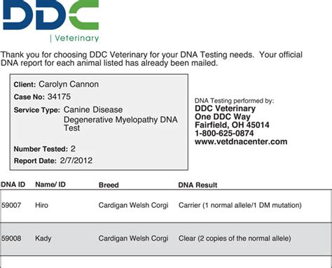 dna paternity test results letter bing images