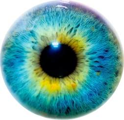 colorful eye tiny blurry pictures find the limits of computer image