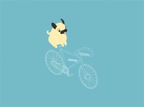 pug cycle 17 best images about gifs de bicicletas on