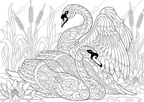 coloring pages  adults swan birds  love adult