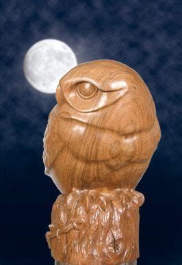 carve   owl  woodworkers institute