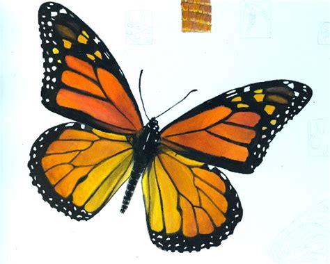 imagenes html size amalia satiz 225 bal posada i draw you smile mariposas