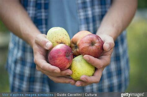 Arrosage Des Tomates Dans Le Sud by L 233 Gumes Au Potager Comment Bien Les Arroser Les L 233 Gumes