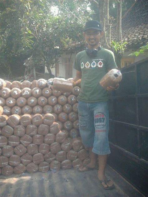 Bibit Jamur Tiram Yogyakarta jual pelatihan budidaya jamur