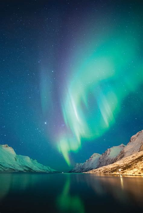 Hurtigruten Northern Lights Cruise Holidays 2018 2019