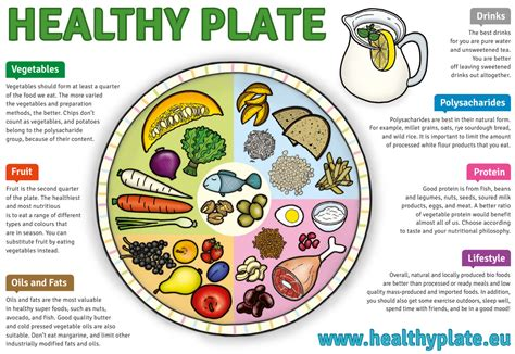 healthy plate template nutrition health coach prague margit slimakova m sc