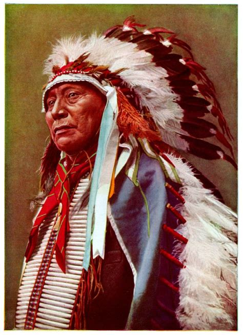 cherokee indian hair 28 best indian strength wisdom heritage images on