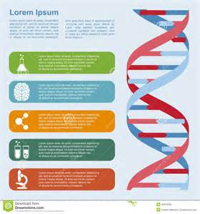 dna infographic stock vector image 46314589