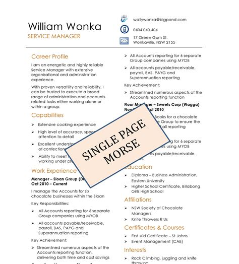 Diy Resume Templates Absolute Resume Single Resume Template