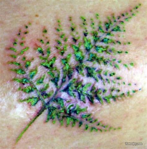 small fern celtic meaning endurance strength