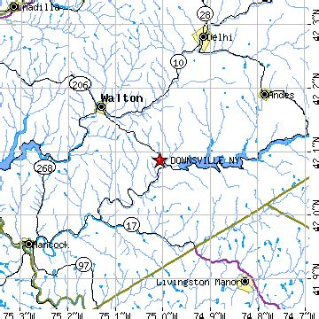 downsville, new york (ny) ~ population data, races