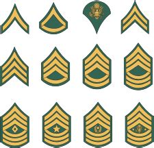 u.s. army, enlisted rank insignia vector image | america
