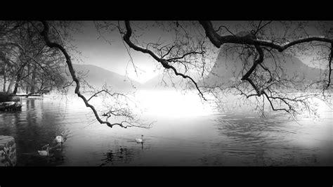 black and white paintings lugano lake nikon 1 v1 black and white