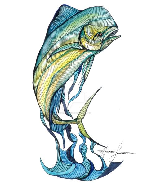 mahi mahi fish drawing www pixshark com images