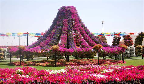 Best Flower Gardens Bing Images Best Flower Garden