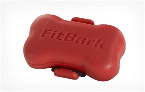 fitbit for dogs fitbark is a fitbit for your