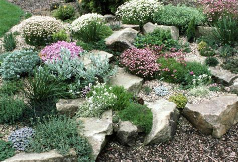 How To Start A Rock Garden Starting A Rock Garden Corner How To Start A Rock Garden