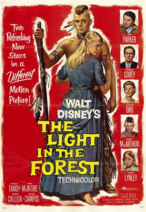 The Light In The Forest by The Light In The Forest Posters From Poster Shop