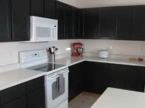 kitchen black painted cabinets for kitchen design diy