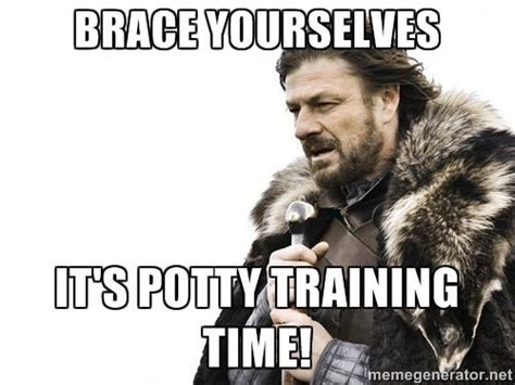 Training Meme - 25 best ideas about potty training humor on pinterest