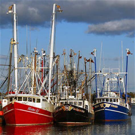 electric boat motors nz new zeland boat electric motor 171 all boats