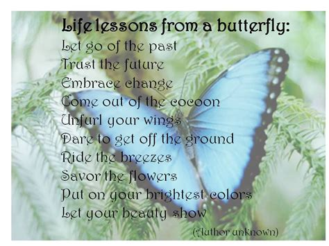 butterfly sayings quotes about friends and butterflies quotesgram turning