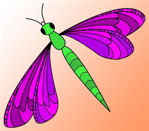 free clipart downloads dragonfly clipart free clipart best