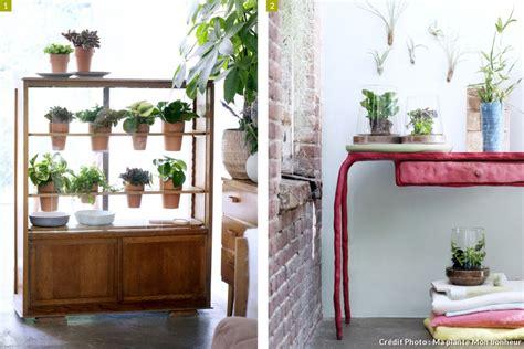 meuble pour plante cinq id 233 es pour mettre en sc 232 ne vos plantes d int 233 rieur