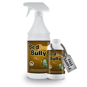 kill bed bugs prevent infestations bed bug bully