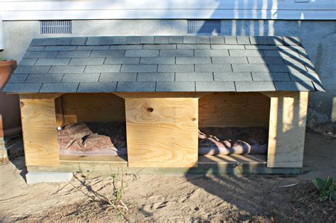 diy dog houses large dogs 5 droolworthy diy dog house plans healthy paws