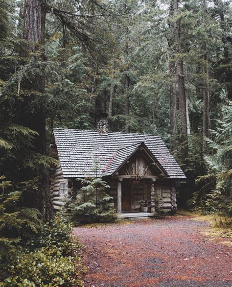 building a small cabin in the woods 1000 images about cabin fever on pinterest cabin log