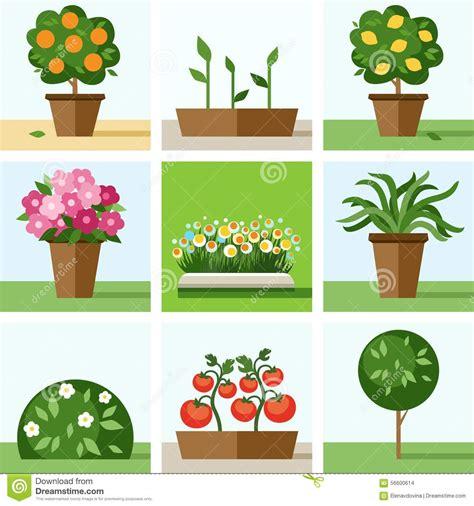 garden flowers a z garden vegetable garden flowers trees shrubs flower