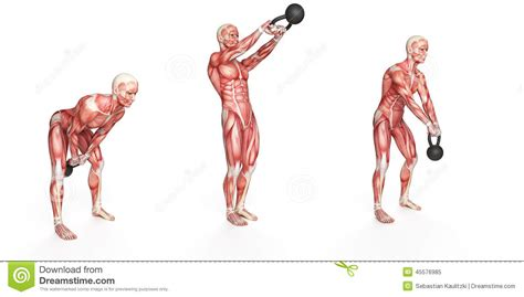 kettlebell swing anatomy side step swing stock illustration image 45576985