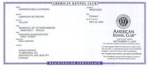 akc registration doindogs cd cgn wc retired