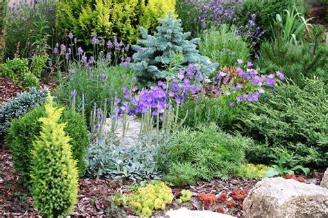Alpine Garden by Alpine Garden Basics Outdoortheme