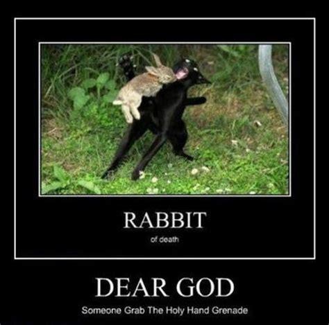 Monty Python Meme - monty python rabbit meme memes