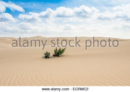 sand dunes in boavista desert with blue sky and clouds