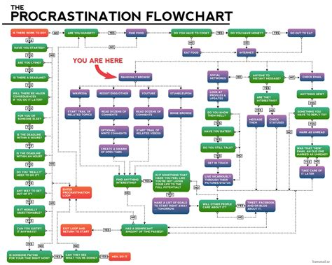 flow chatt the procrastination flowchart this is what i am doing