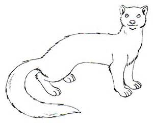 Cute weasels drawing weasel template by lenval
