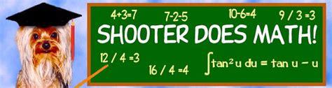 yorkie does tricks hear shooter the terrier do math tricks